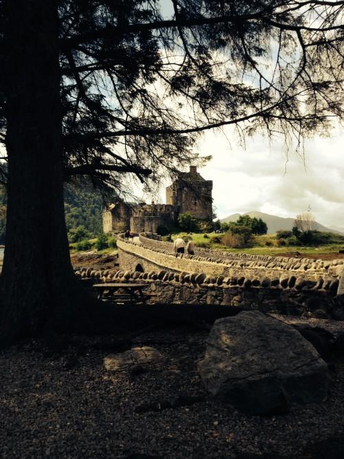 Eilean Donan Castle Yesterday, 7/15/14
