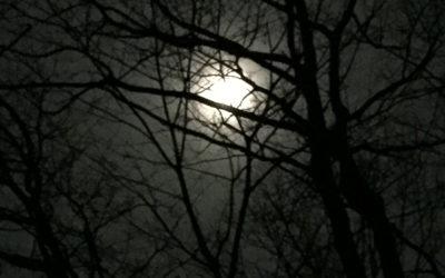 Tonight's Super Worm Moon